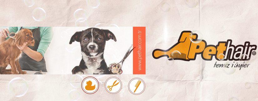 Köpek Kuaförü Avrupa Yakası